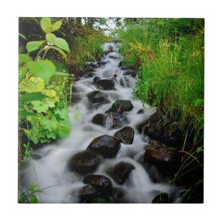 Liten vattenfall kakelplatta