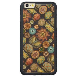 Liv för Ernst Haeckels Actinae hav Carved Lönn iPhone 6 Plus Bumper Skal