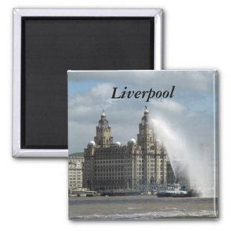 Liverpool Magnet