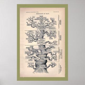 Livets träd/Pedigree av manen Poster