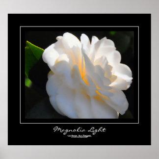 Ljus svart gränsaffisch för Magnolia Poster
