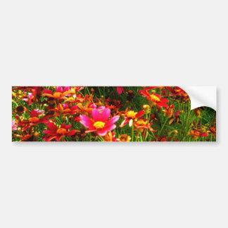 Ljusa blommor för rosa- och gultdaisyvild bildekal