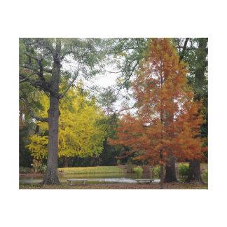 Ljust höst färger i Alabama Canvastryck