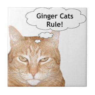 Ljust rödbrun katter härskar kakelplatta