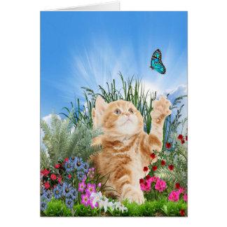Ljust rödbrun kattunge som leker med en fjäril hälsningskort