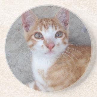 Ljust rödbrun kattunge underlägg