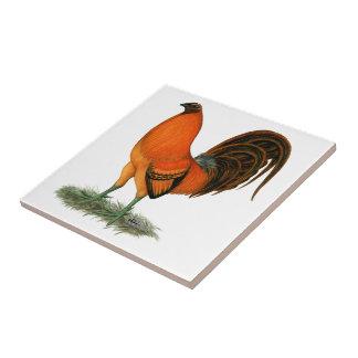 Ljust rödbrun röd tupp för Gamecock Kakelplatta