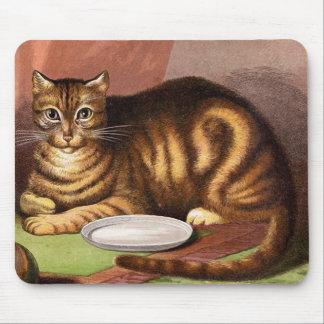 Ljust rödbrun tabby kattvintageillustration musmattor