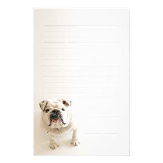 Lojal fodrat handstilpapper för vit bulldogg brevpapper
