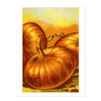 Lökar för fransk för Heirloom för vintagegrönsaker Vykort