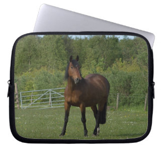 Lone häst laptop sleeve