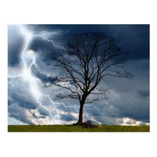 Lone träd och blixt vykort