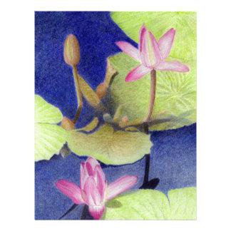 Lotusblomma 600 brevhuvud