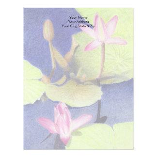 Lotusblomma Brevhuvud