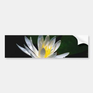 Lotusblommablomma eller näckros och menande bildekal