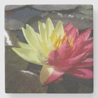 Lotusblommablomma Underlägg Sten