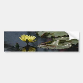 Lotusblommanäckrosbildekal Bildekal