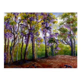Louisiana träd och Wisteria Vykort