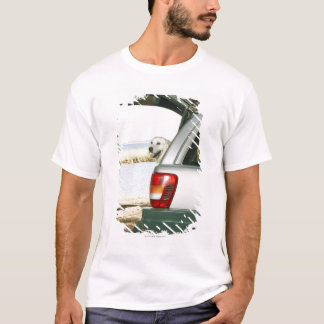 Lourensford Somerset West, Sydafrika T Shirt