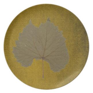 Löv för dammiga grå färg för vintage torrt på tallrik