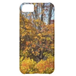 Löv för träd för nedgånghöstplatser iPhone 5C fodral