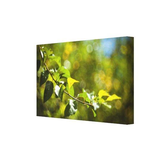 Löv och bokeh canvastryck