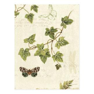Löv och en fjäril vykort