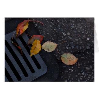 Löv och spisgaller OBS kort