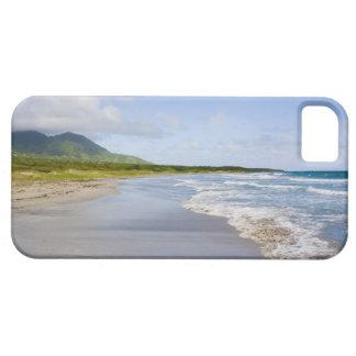 Lovart- strand, Nevis iPhone 5 Cases