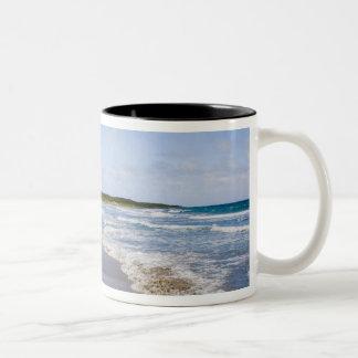 Lovart- strand, Nevis Två-Tonad Mugg