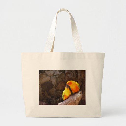 Love birds kasse