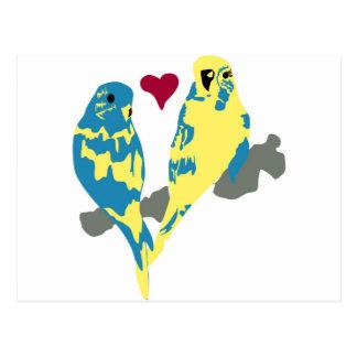 Love birds vykort