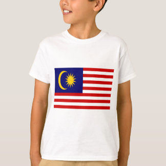 Lowen kostar! Malaysia flagga Tröja