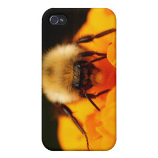 Luddig humla iPhone 4 cases