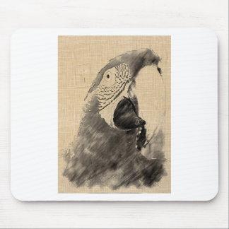 Lulu-macawen skissar musmatta