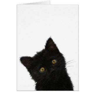 Luna Bella svart kattunge Hälsningskort