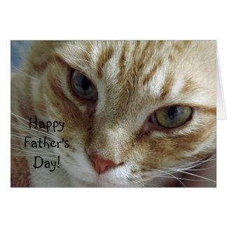 Lycklig fars dag från katt hälsningskort