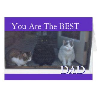 Lycklig fars dag från katter hälsningskort