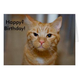 Lycklig? Födelsedag! (Denna katt ser grumpy), Hälsningskort