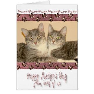 Lycklig mors dag från båda av oss med katter hälsningskort