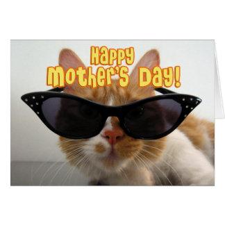 Lycklig mors dag - kall katt i solglasögon hälsningskort