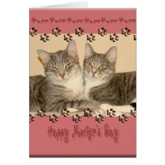 Lycklig mors dag med två katter hälsningskort