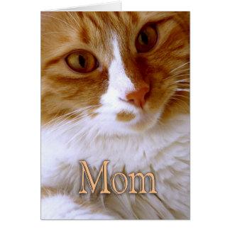 Lycklig mors dag - söt katt hälsningskort