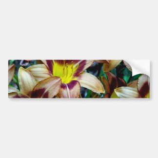 Lyckliga Daylilies Bildekal