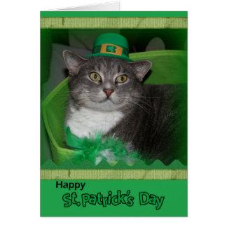 Lyckligt St Patrick dagkort med katten Hälsningskort