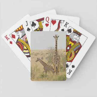 Maasai giraff som strövar omkring över Maasaien Spelkort