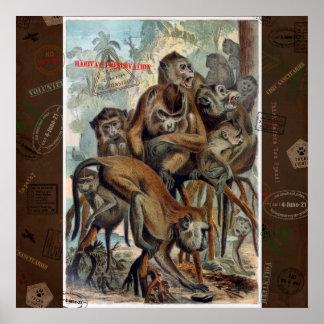 Macaques för ansvarig reser poster