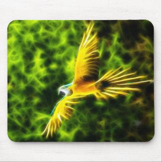 Macaw i flyg musmatta