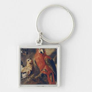 Macaw och domherre fyrkantig silverfärgad nyckelring