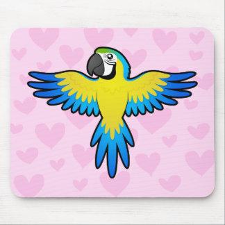 Macaw-/papegojakärlek Musmatta